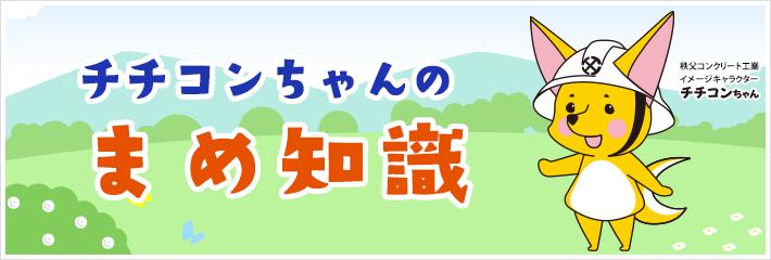 チチコンちゃんの豆知識